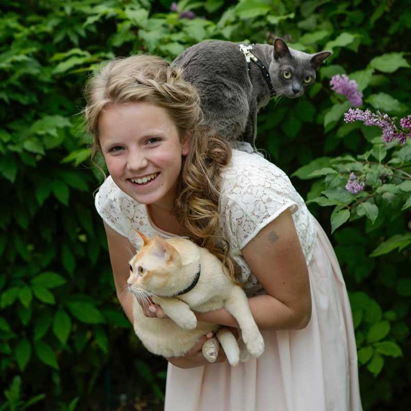 Kissan koulutus, kissan opettaminen - Eläinkoulu Välkky, Harjavalta